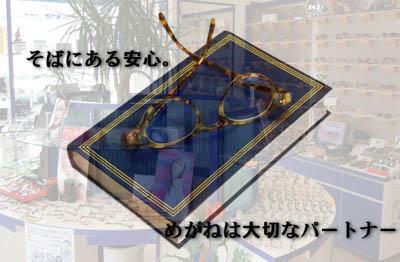 20060711093820_6.jpg